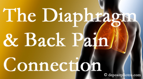 Executive Chiropractic of Iowa recognizes the relationship of the diaphragm to the body and spine and back pain.