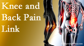 Executive Chiropractic of Iowa treats back pain and knee osteoarthritis to help prevent falls.