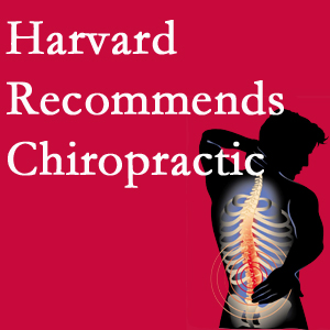 Executive Chiropractic of Iowa offers chiropractic care like Harvard recommends.