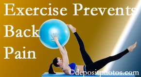 Executive Chiropractic of Iowa encourages West Des Moines back pain prevention with exercise.