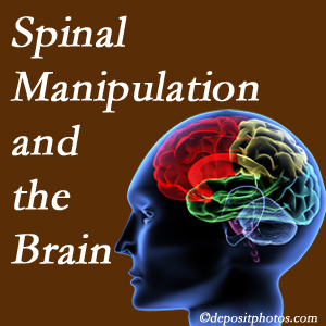 Executive Chiropractic of Iowa [shares research on the benefits of spinal manipulation for brain function.